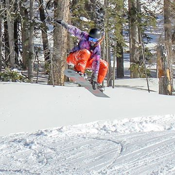 Picture of Adult Board Half Day Refresh Lesson/Lift