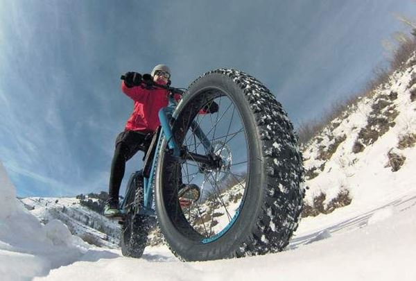 Picture for category Fat Tire Bike Race